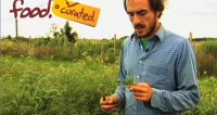 SAVEUR's 2011 Best Food Blog Awards Selects food. curated. as a Finalist for Best Video Content