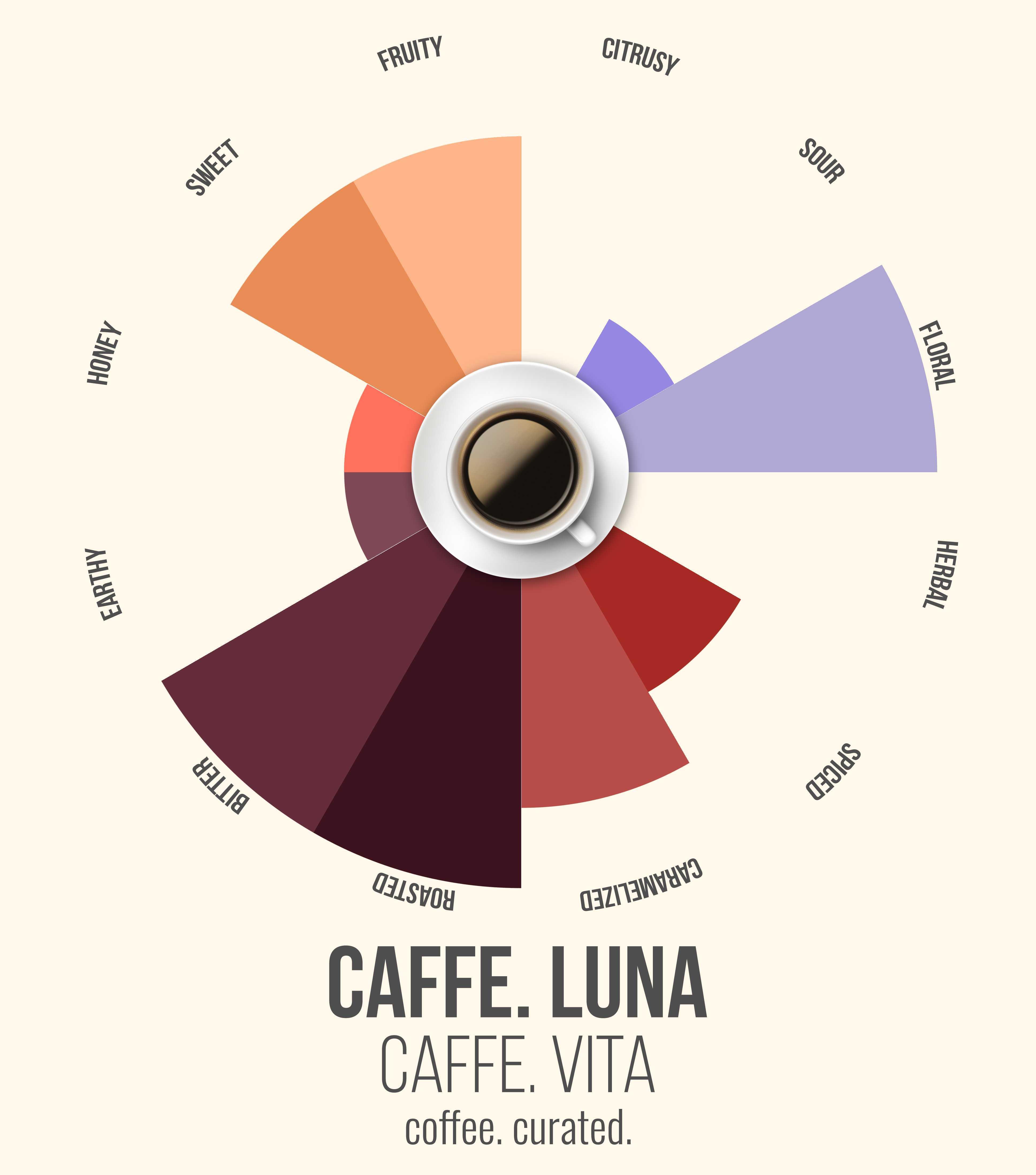 Caffe Vita Caffe Luna