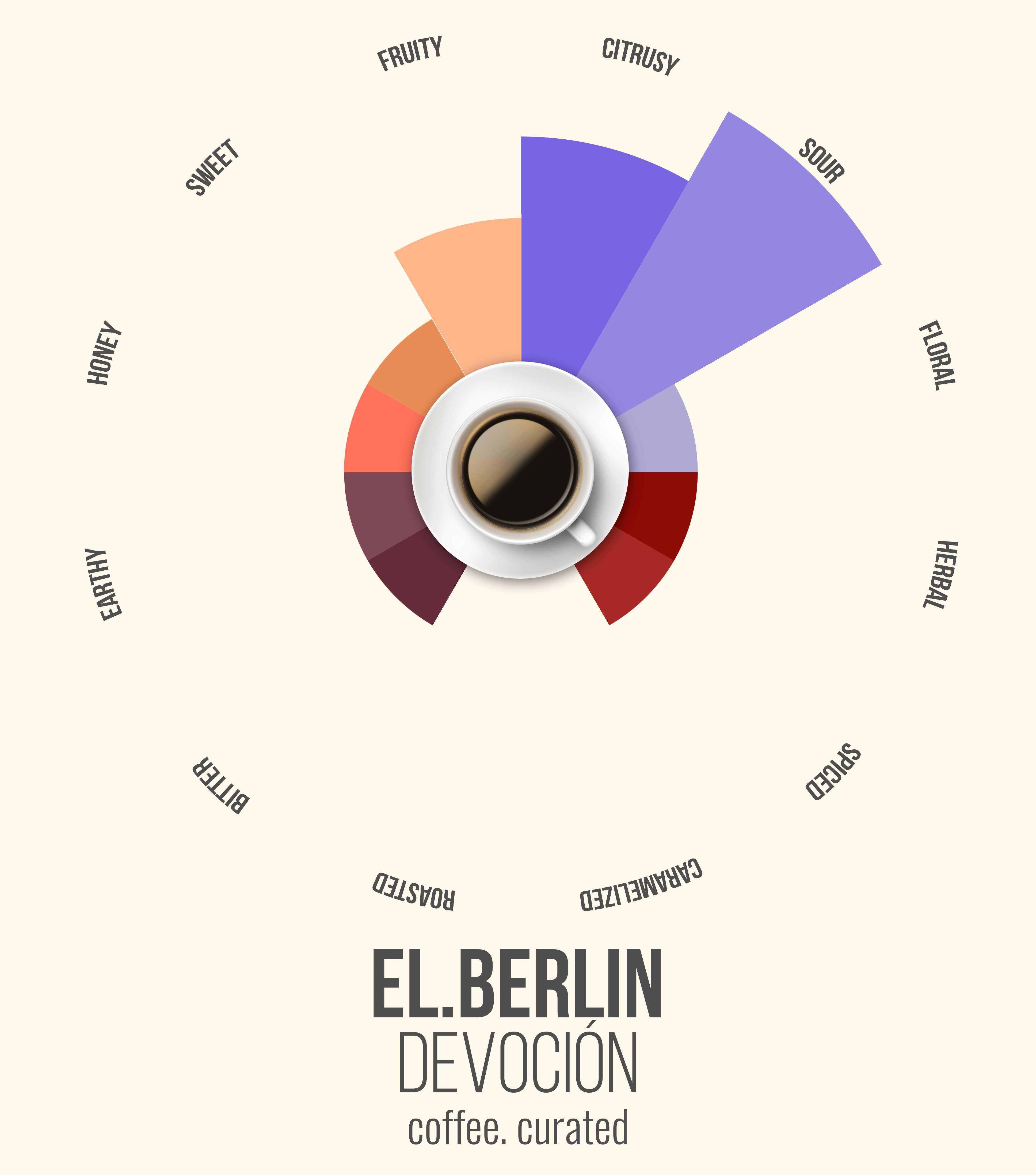 EL BERLIN Devocion Coffee