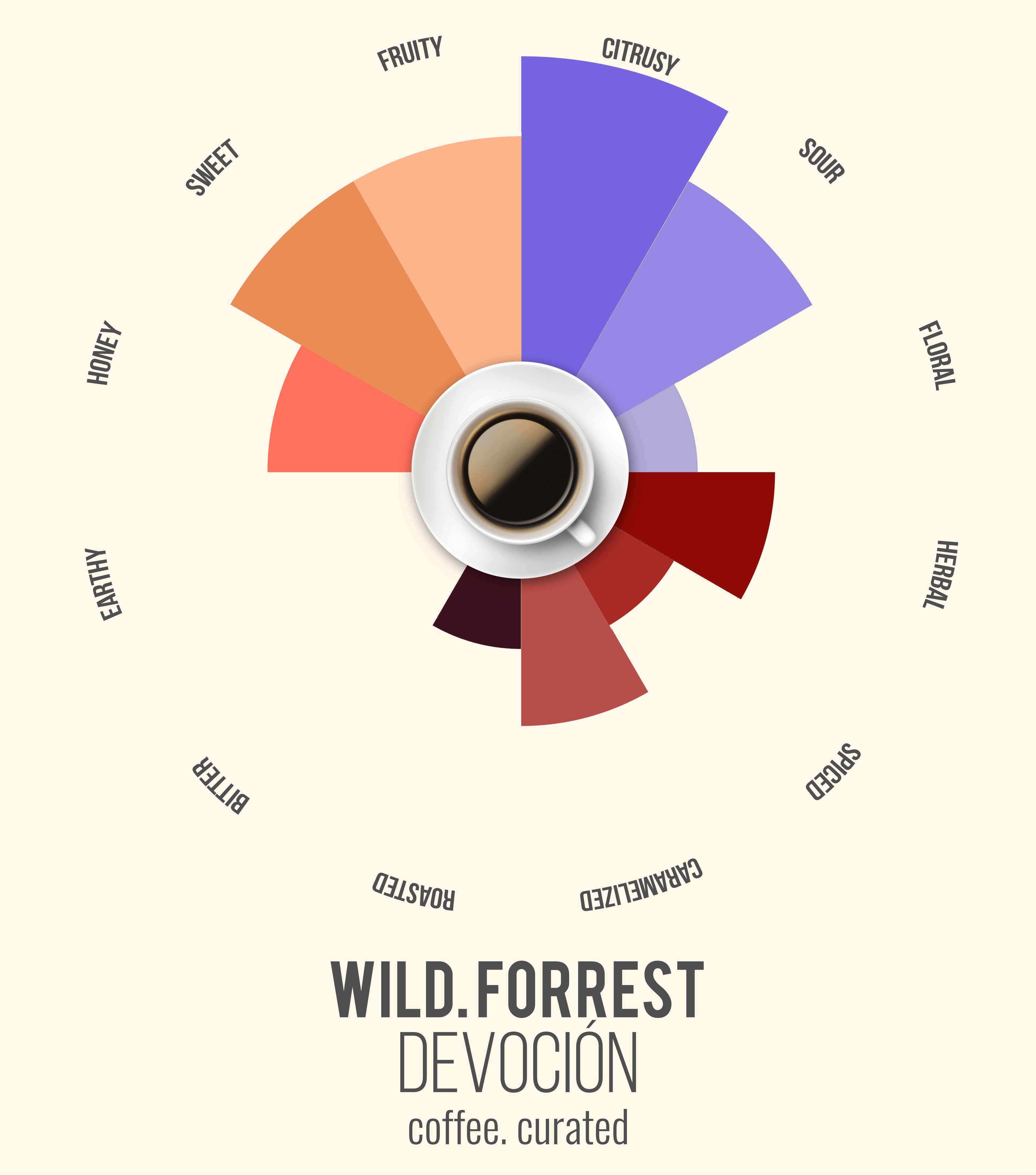 WILD FORREST Devocion Coffee