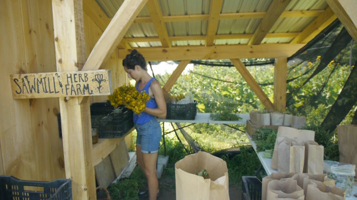 Plant Medicine CSA, Sawmill Herb Farm, food. curated.