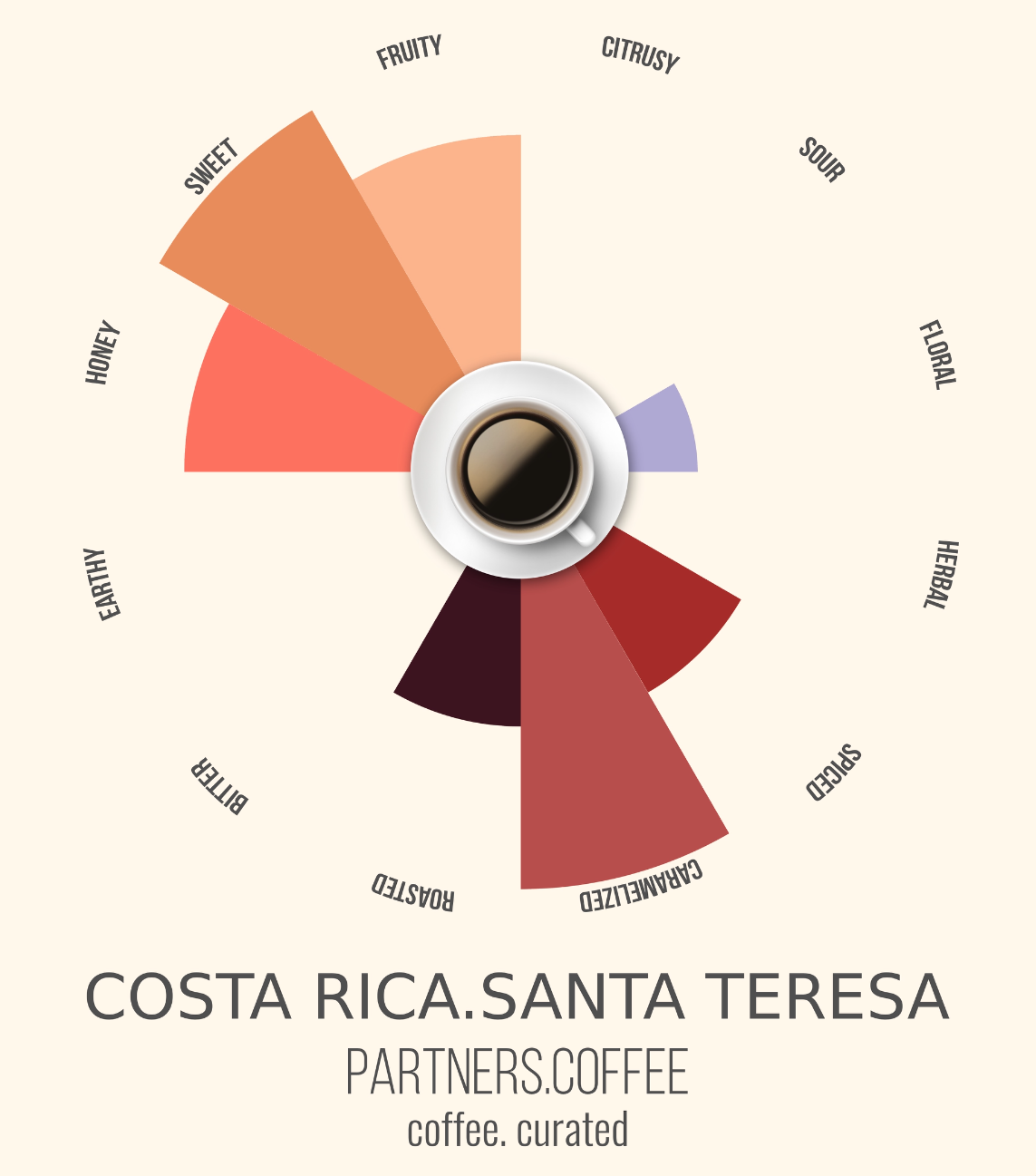 Partners Coffee Costa Rica_Coffee Curated