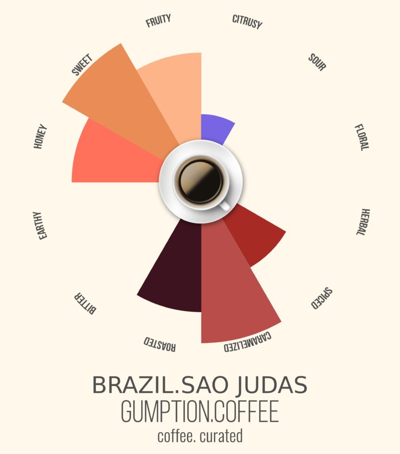 Gumption Coffee, Brazil, Coffee Curated