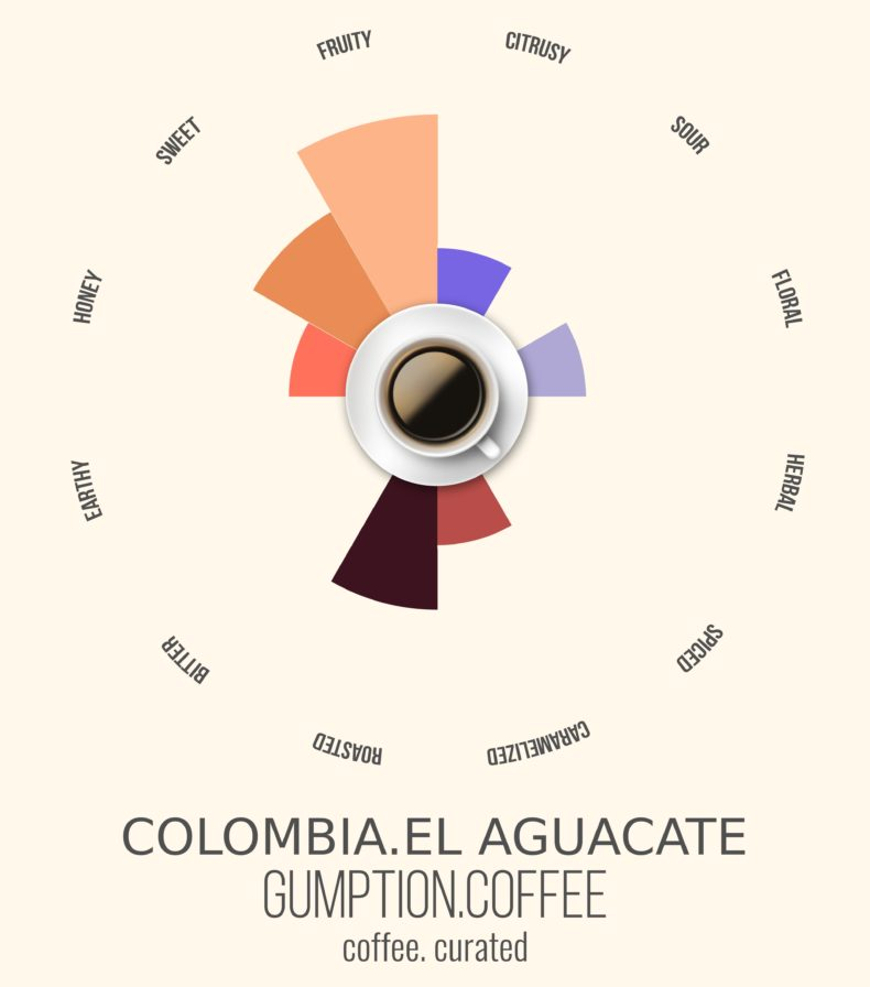 Gumption Coffee, Colombia El Aguacate, Coffee Curated