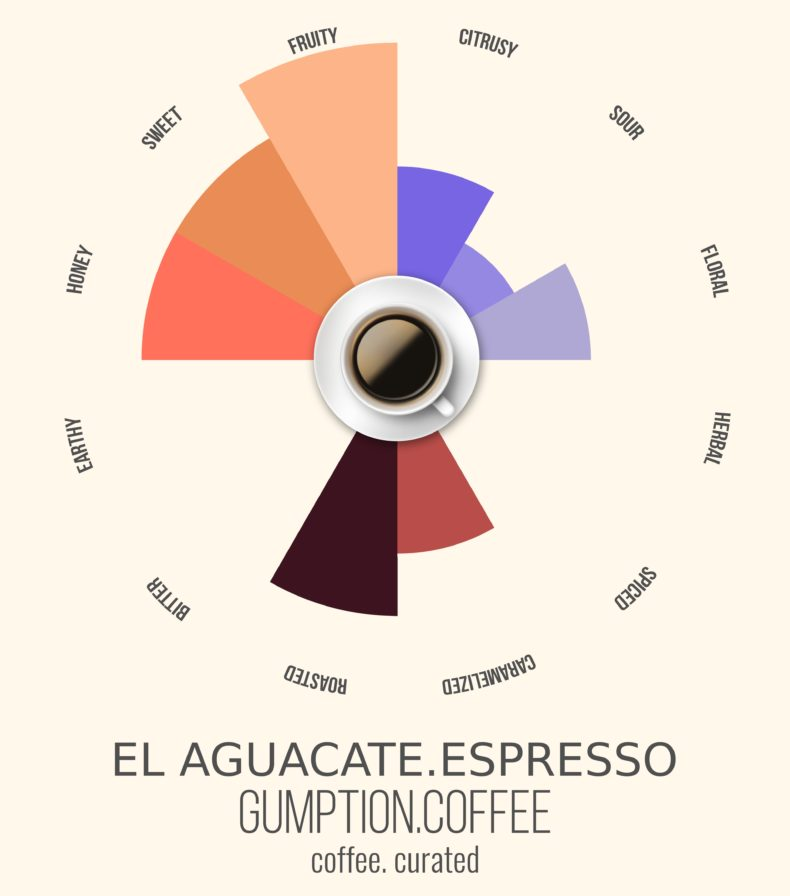 Gumption Coffee, El Aguacate Espresso, Coffee Curated