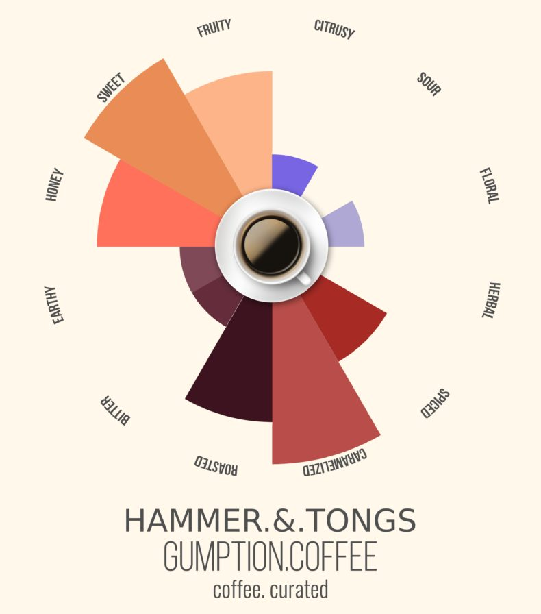 Gumption Coffee, Hammer & Tongs, Coffee Curated