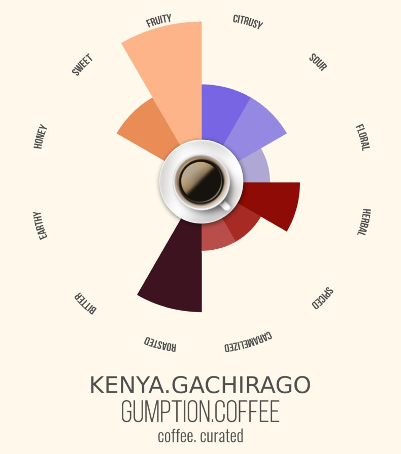 Gumption Coffee, Kenya Gachirago, Coffee Curated
